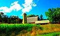 Hellenbrand Farm - panoramio (1).jpg