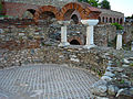Heraclea linkestis, Bitola.JPG