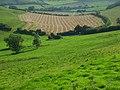 Higher Hill Bottom - geograph.org.uk - 545180.jpg