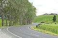 Highway 5 (2034905257).jpg