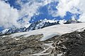 Hike to Glacier d'Argentière - panoramio (45).jpg