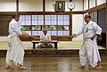 Hokushin Itto Ryu.jpg