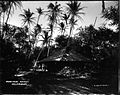 Hon. C.R. Bishop's Grass House, Waikiki (1), photograph by Brother Bertram.jpg