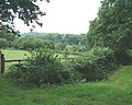 Horses and fields off Pound Lane - geograph.org.uk - 35007.jpg
