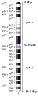 Map of Chromosome 3