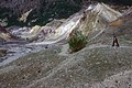 Hummocks trail at Mount St. Helens-Gifford Pinchot (23635713130).jpg