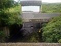 Hutchinson River - Dam 3 - Spillway.jpg