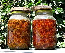 Semena Třezalka tečkovaná (Hypericum perforatum)