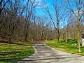 Ice Age Trail National Scenic Trail - panoramio (1).jpg