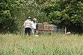 Imkers met bijen.jpg
