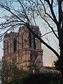 Incendie de Notre-Dame-de-Paris 15 avril 2019 32.jpg