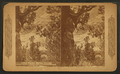 Indian wigwam, Manitou, Colorado, from Robert N. Dennis collection of stereoscopic views.png