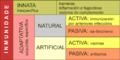 Inmunidade tipos miguelferig.png