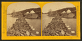Iron Ore Train of 45 cars crossing Goose Lake, by Carbutt, John, 1832-1905.png