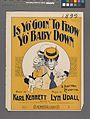 Is yo' goin' to frow yo' baby down (NYPL Hades-608684-1256331).jpg