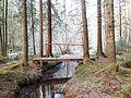 Jääskelä nature trail 10.jpg