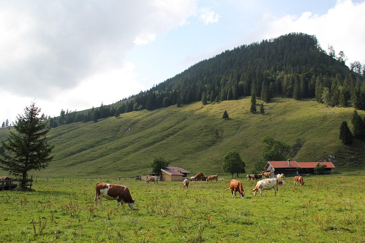 Kelheimer Hütte