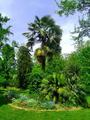 Jardin des plantes montauban2.png