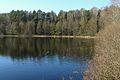 Jezioro Osemka lub Pustelnik, Rzecin, Puszcza Notecka (5).JPG