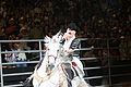 Joan Sebastian Pepsi Center 2.jpg