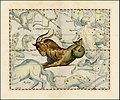 Johannes Hevelius - Capricornus.jpg