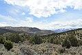 Jumbo Grade Trail - panoramio (22).jpg