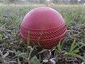 K.Pudur Village Rose Cricket ball 3.jpg