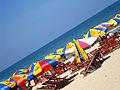 KDL Biển Đông.jpg
