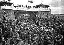 Amicale de Mauthausen