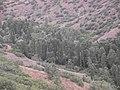 Karaboğaz - panoramio (1).jpg