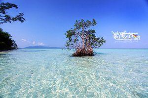 Bahasa Indonesia: Pulau Galean Karimunjawa