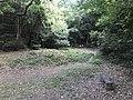 Kasuya Research Forest of Kyushu University 12.jpg