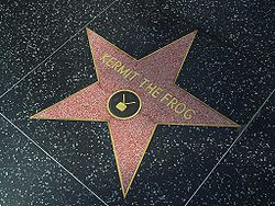 http://upload.wikimedia.org/wikipedia/commons/thumb/5/51/Kermit_the_frog_hollywood_walk_of_fame.jpg/250px-Kermit_the_frog_hollywood_walk_of_fame.jpg