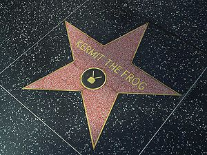 Kermit the Frog - Kermit's star on the Hollywood Walk of Fame