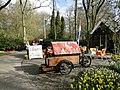 Keukenhof - panoramio (38).jpg