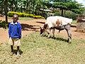 Kid at Maringa Chini Primary School, Tanzania - panoramio.jpg