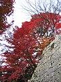 Kiyomizu-dera National Treasure World heritage Kyoto 国宝・世界遺産 清水寺 京都29.JPG