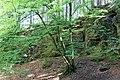 Klettergarten Gleißental-bjs180519-01.jpg