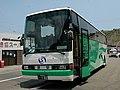 Kochiseinan102.jpg