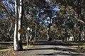 Kosciuszko National Park NSW 2627, Australia - panoramio (146).jpg