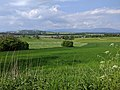 Kozinec (608 m) - pohled ze severního úbočí vrchu k severu, na Nedaříž a Studenec (1).jpg