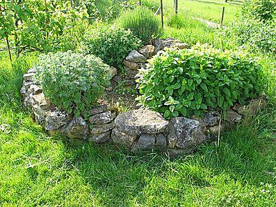 Search cultivea,kit pret a pousser,herbe aromatique | owlapps