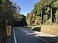 Kumamoto Prefectural Road No.298 near Aso Farm Land 3.jpg