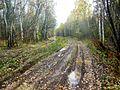 Kungursky District, Perm Krai, Russia - panoramio (93).jpg