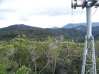 Queensland tropical rain forests - View from the Skyrail Rainforest Cableway, 2004