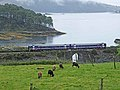 Kyle of Lochalsh railway at Craig Highland Farm - geograph.org.uk - 1479652.jpg