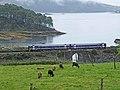 Kyle of Lochalsh railway at Craig Highland Farm - geograph.org.uk - 1479652.jpg