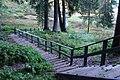 Līgatne - panoramio (13).jpg