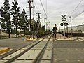 LACMTA Gold Line Duarte Station, looking down the tracks.jpg