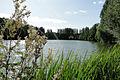 La vallée de Rochefort.jpg
